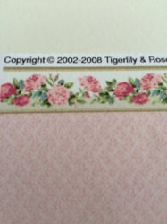 Edgecomb Damask Rose Border Rose with Pink